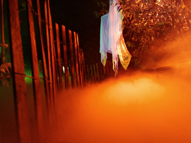 2013 Graveyard - Orange Glow